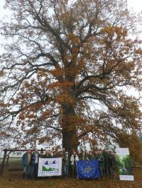 2017. November 8-9 Foresters' field trip to the ?rség region in Hungary
